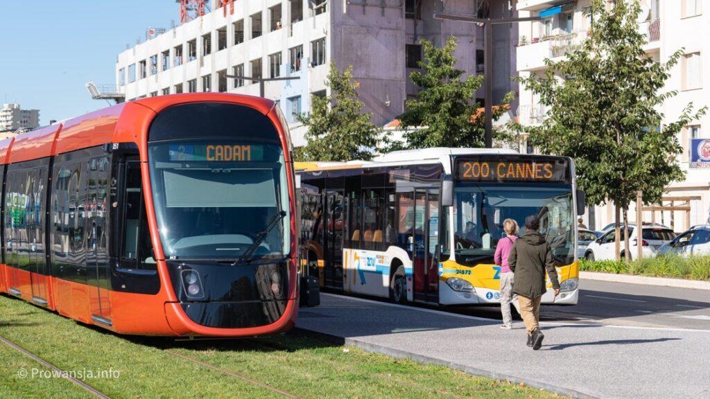 Tramwaj T2 na przystanku Park Phoenix, gdzie można się przesiąść w autobusy 200, 400 i 500