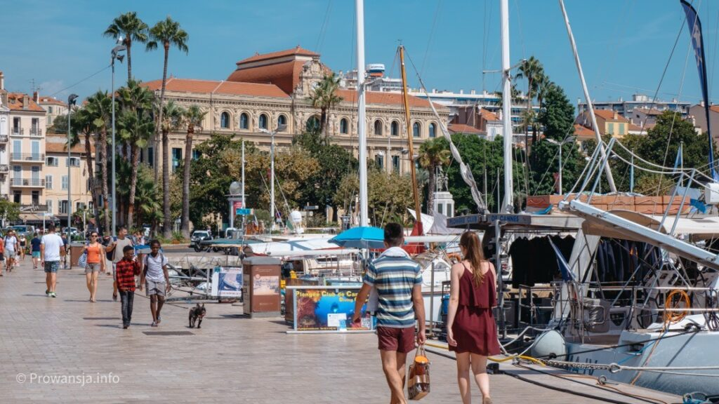Stary Port w Cannes