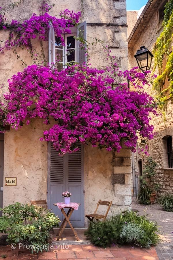 Stare Miasto w Antibes